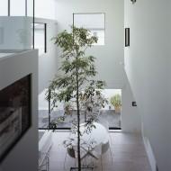 Растения в интерьере коттеджа