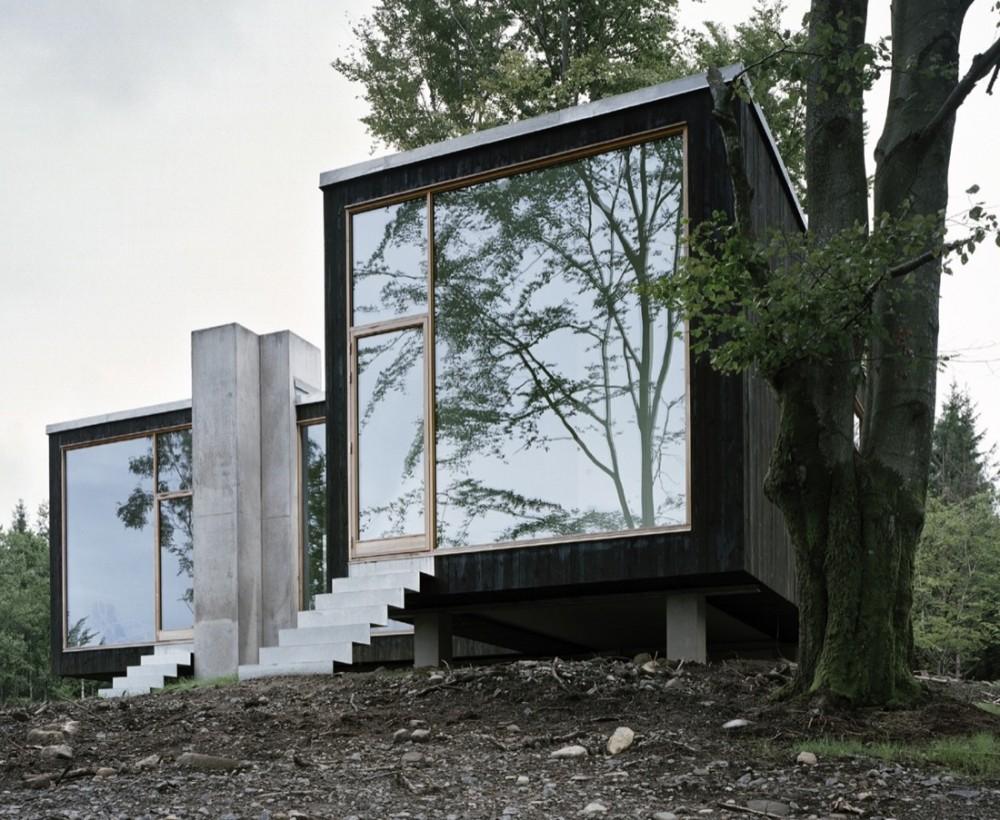 Проект отдельно стоящего одноэтажного коттеджа в лесу