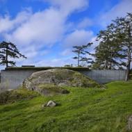 Проект каменного коттеджа вид сзади