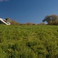 Проект современного коттеджа вписавшегося в окружающий ландшафт